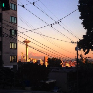The Space Needle and Wires.