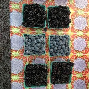 Farmer's Market Berries.