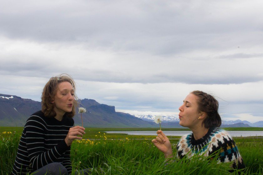 6.19.2016 Arnarstapi, Iceland